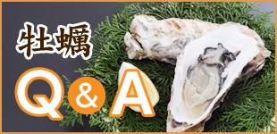 牡蠣 Q&A