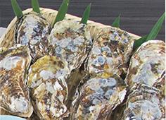 冷凍牡蠣むき身牡蠣