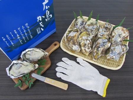 生食用 殻付きかき(20個)・かきナイフ付