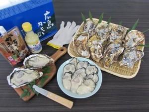 生食用 かき祭りセット(殻付きかき8個・むき身400g・土手鍋用みそ・レモン果汁)